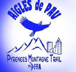 Pyrénées section trail montagne